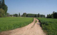 fotos-guarderia-2010-178